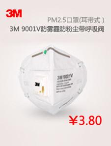 3M 9001V自吸过滤式防颗粒物呼吸器25个/盒,10盒/箱 XH003896863