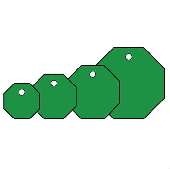 安赛瑞 Saferln 空白塑料吊牌-八边形,绿色